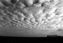 Krajina & Zátiší