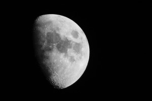 mesic_001_900px